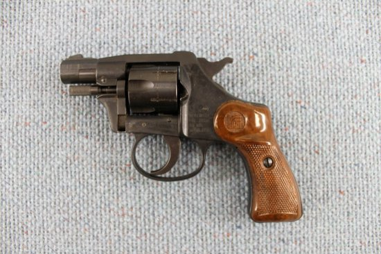 RG 23 Swingout Revolver .22 CAL LR