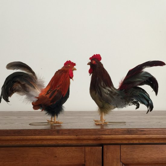 Pair of Rooster Figurines with Real Feathers