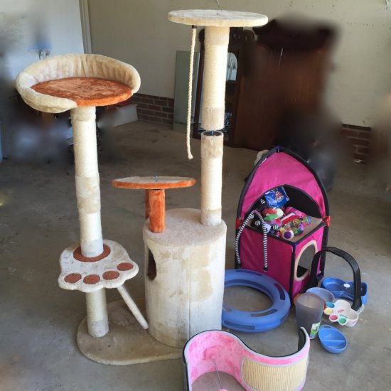 Cat Climbing Tower & Large Lot of Cat Toys & Accessories