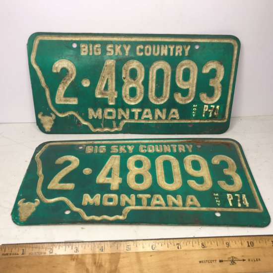 Pair of 1974 Montana License Plates for Front & Back