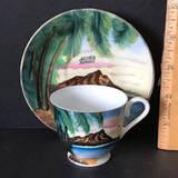 "Hand Painted ""Hawaii"" Souvenir Demitasse Cup & Saucer"