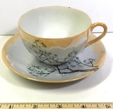 Japanese Teacup and Saucer Set
