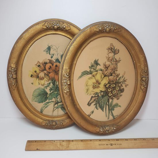 Vintage Oval Botanical Art in Gold Gesso Frames Set of 2
