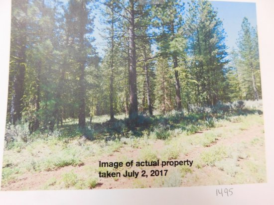 LOT#5 - 1 ACRE LOT MODOC COUNTY NEAR STOCKED FISHING POND