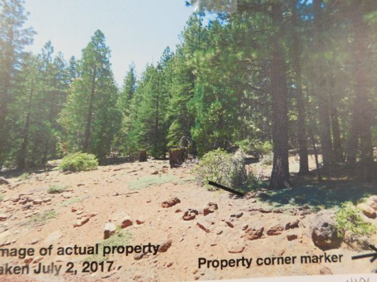 LOT#6 1+ ACRE LOT NEAR LAKES MODOC COUNTY
