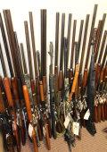 Firearm & Taxidermy Auction