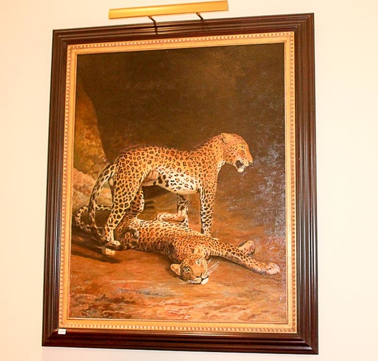 Two Leopards Lying in the Exeter oil painting reproduction