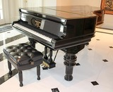 1880's Steinway & Son's Antique Grand Piano