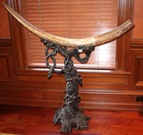 Mammoth Tusk with stand