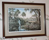 Summer Games Florida Wildlife Framed Print, Ben Essenburg