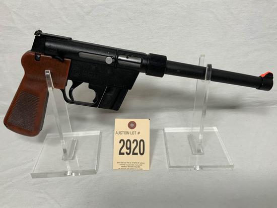 AR7 Survival Pistol