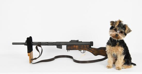 NO RESERVE Gun Collectors Dream Auction #22