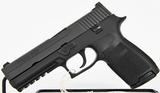 Sig Sauer P250 Semi Auto .45 ACP Full size Pistol