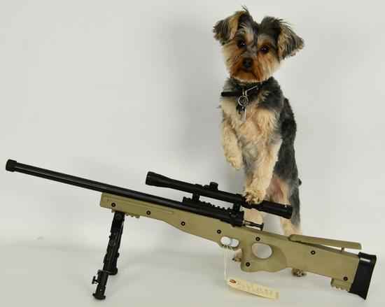 Gun Collectors Dream Auction #30 NO RESERVES!