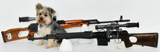 Gun Collectors Dream Auction #44 NO RESERVES DAY 1