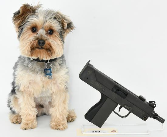Gun Collectors Dream Auction #45 Day 2 NO RESERVES