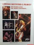 Lynyrd Skynrd Peavy Band Concert Poster