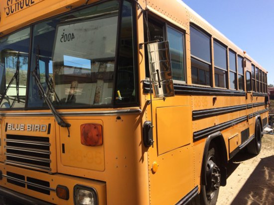 1995 BLUE BIRD SCHOOL BUS