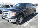 2013 FORD F150 4X4