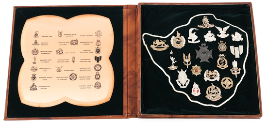 REGIMENTAL BADGES OF THE RHODESIAN ARMY CASE