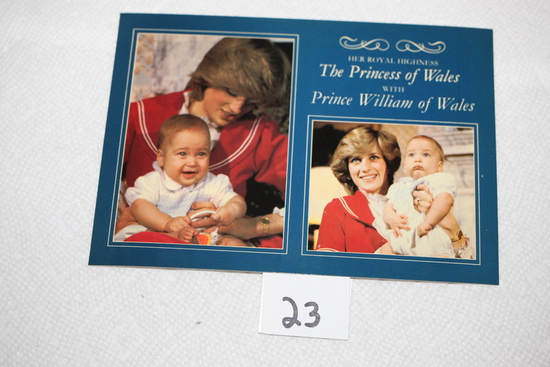 The Princess Of Wales With Prince William Of Wales Post Card, Pitkin Colourmaster, Heritage Series