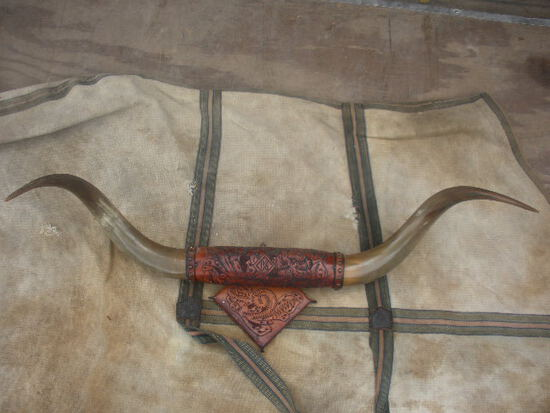 Leather Tooled Mounted Longhorn Steer Horns 34""
