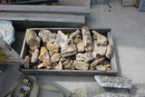 Box of Petrified wood Small