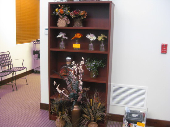 Lot artificial Plants (13) Shelf not included
