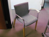 (6) Guest/Arm Chairs