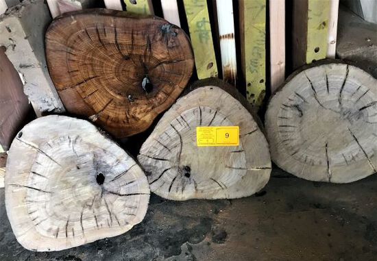 (4) Mesquite Rounds 12 x 1-1/2 - 2 Thick