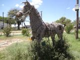 Full Size chia pet horse