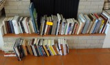 Large Lot of Books