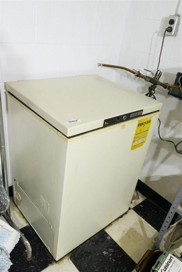 Basement Chest Freezer