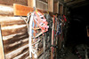 Very Large Wall Lot of Horse Tack Leather Ropes
