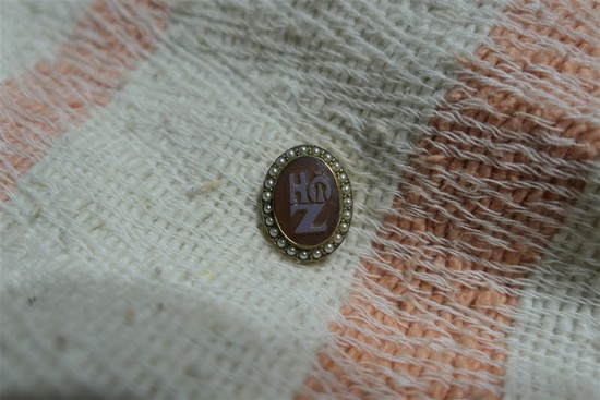 Antique 14k Gold Fraternity Pin