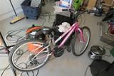 Schwinn Frontier Lady's Bicycle