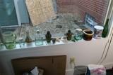 Glass, ceramics items on windowsill lot