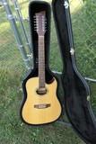 NIce 12 String Guitar by Jay Turner