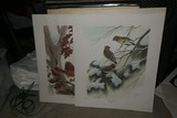 Pair of Signed Bird Prints by John Ruthven