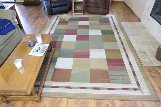 2 Nice newer decorative area rugs
