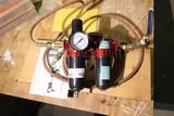 Air lubricator filter system