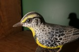 Carved wood and painted meadow lark bird by Emeric Zuccaro