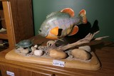 Carved wood and painted Piranha & turtle by Emeric Zuccaro