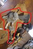 Native American War Hammer or Club w/Skull