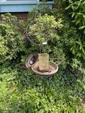 Yard art metal cat bird bath