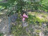Metal railings, flamingos, other yard art
