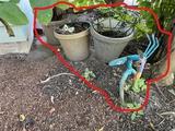 Yard art shovel bird, planters with small art pieces