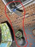 Garden butterfly decor piece, planter, hanging lantern