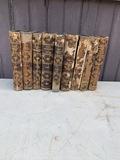 Set of 9 Washington Irving books