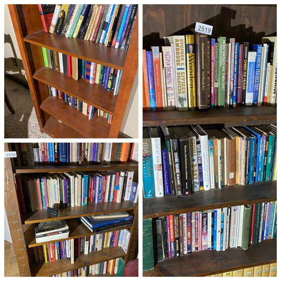 Contents of three shelves - books